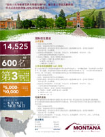Chinese Fact Sheet
