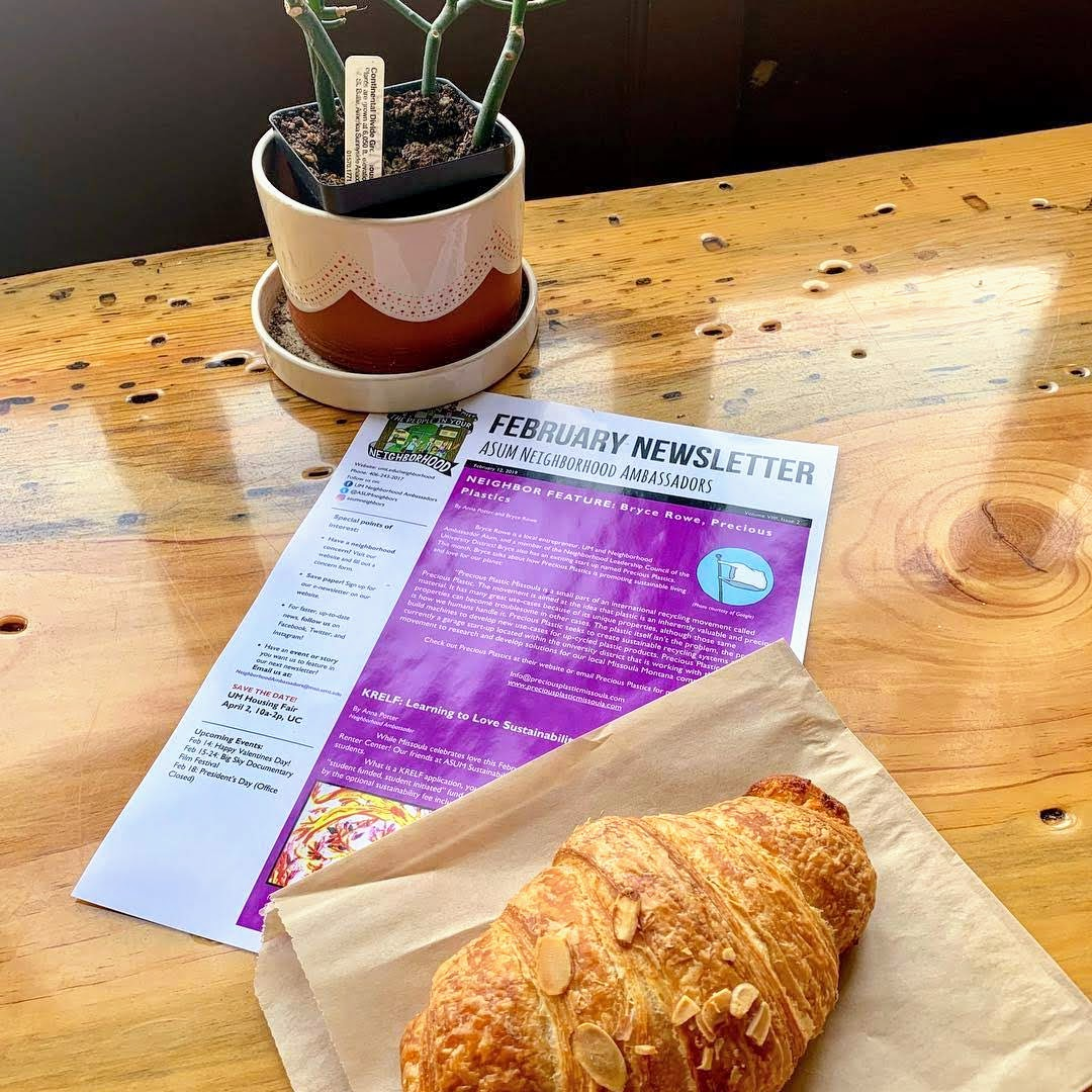 Newsletter on a table with a potted plant and a pastry.