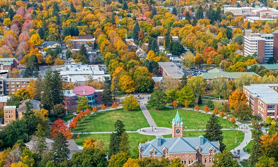 Bright autumn colors light up the UM campus