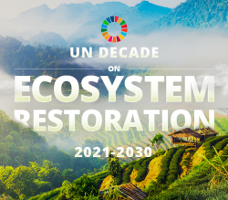 UN Decade on Ecosystem Restoration