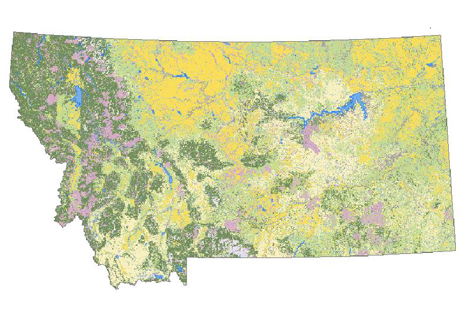 Montana Land Cover Layer