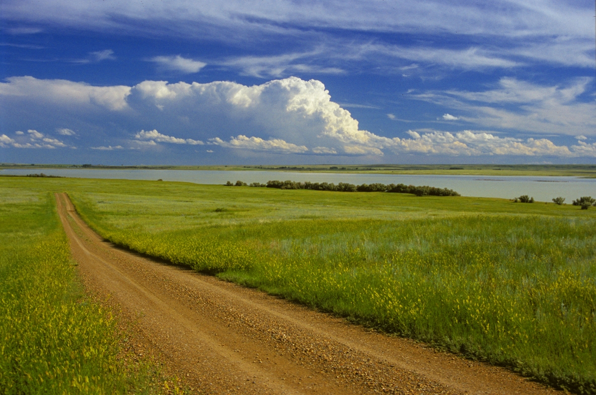 A road winds across the Bowdoin National Wildlife Refuge near Malta. (Photo by Rick and Susie Graetz)