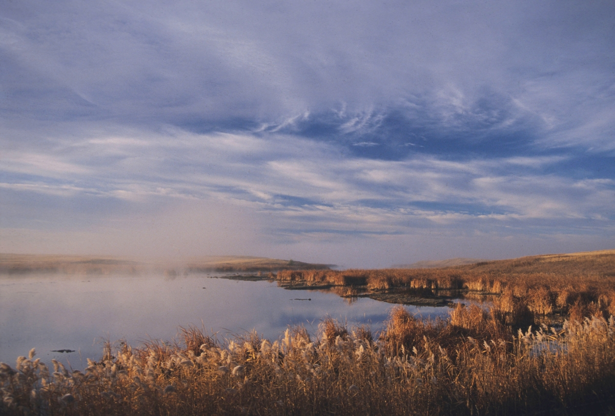 Medicine Lake Fog: Fog rises above a sleepy Medicine Lake on an early autumn morning. (Photo by Rick and Susie Graetz)