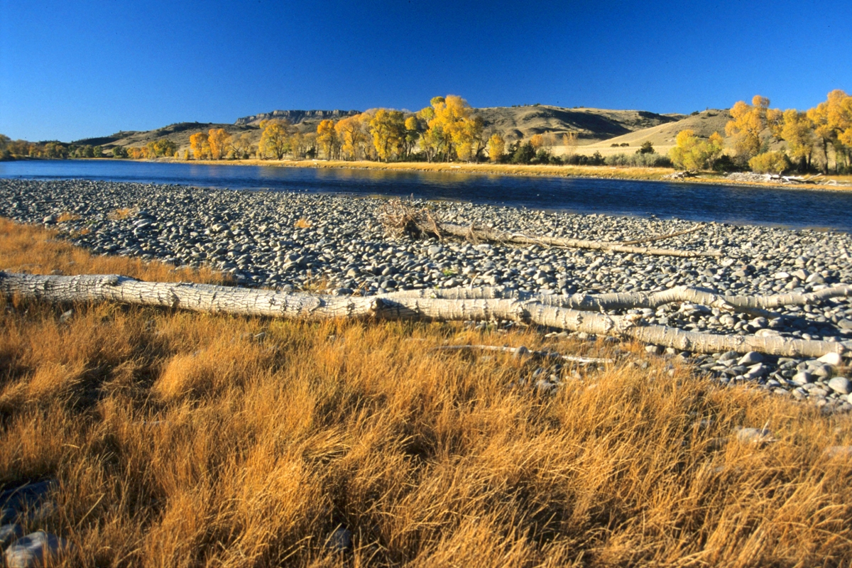 The Yellowstone River winds near Big Timber. (Photo by Rick and Susie Graetz)