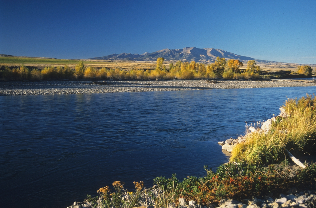 Yellowstone River near Crazy Mountains: Montana's iconic Crazy Mountains are seen in the background of this Yellowstone River scene. (Photo by Rick and Susie Graetz)