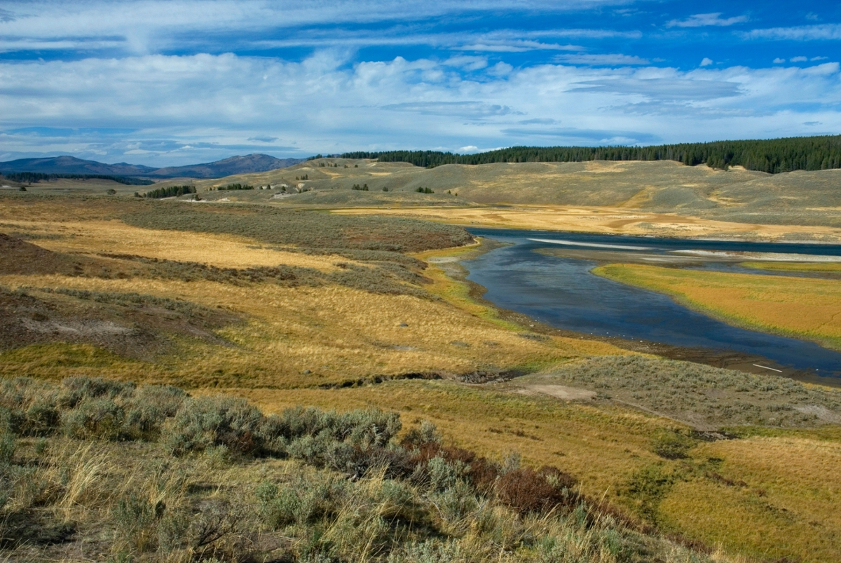 Yellowstone River: The Yellowstone River flows through Hayden Valley in Yellowstone National Park. (Photo by Rick and Susie Graetz)