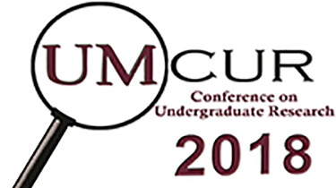 Learn more about UMCUR and undergraduate research