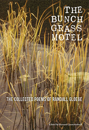 books cover with pond and grass
