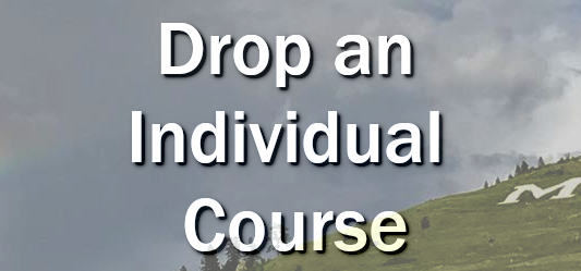 Drop an Individual Course